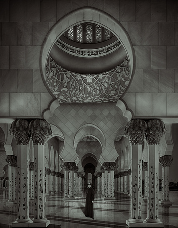 Sheik Zayed#2 - Abu Dhabi (awarded)